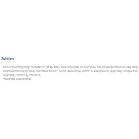 Xenofit Mineral Energy Drink Portionsbeutel 10x36g